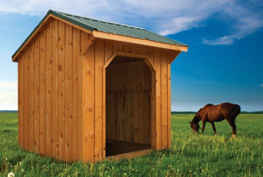 8x8 Horse Run In Shed